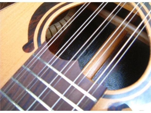 Encordoamento para Viola 10 Cordas 011 - Jogo Corda para Viola c/ Chenilha - 2/5
