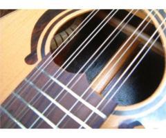Encordoamento para Viola 10 Cordas 011 - Jogo Corda para Viola c/ Chenilha