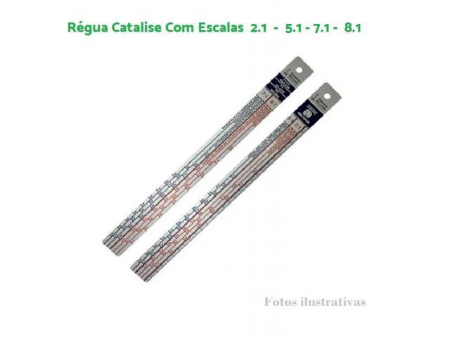 Regua para Catalise Tinta e Vernizes Tradicional - Lazzuril Unidade - 1/5